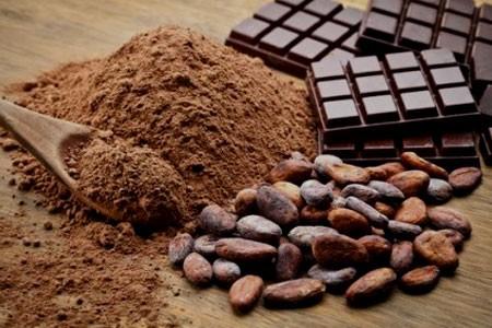 CHOCOLATS & CACAO